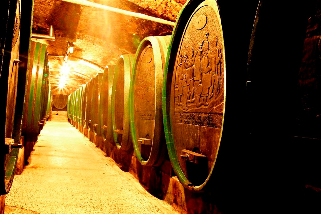 Inside one of the many historic cellars in this part of the world