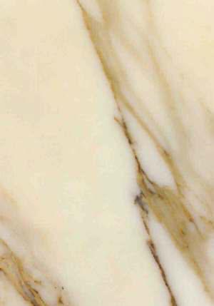 Arabescato Oro Marble.jpg