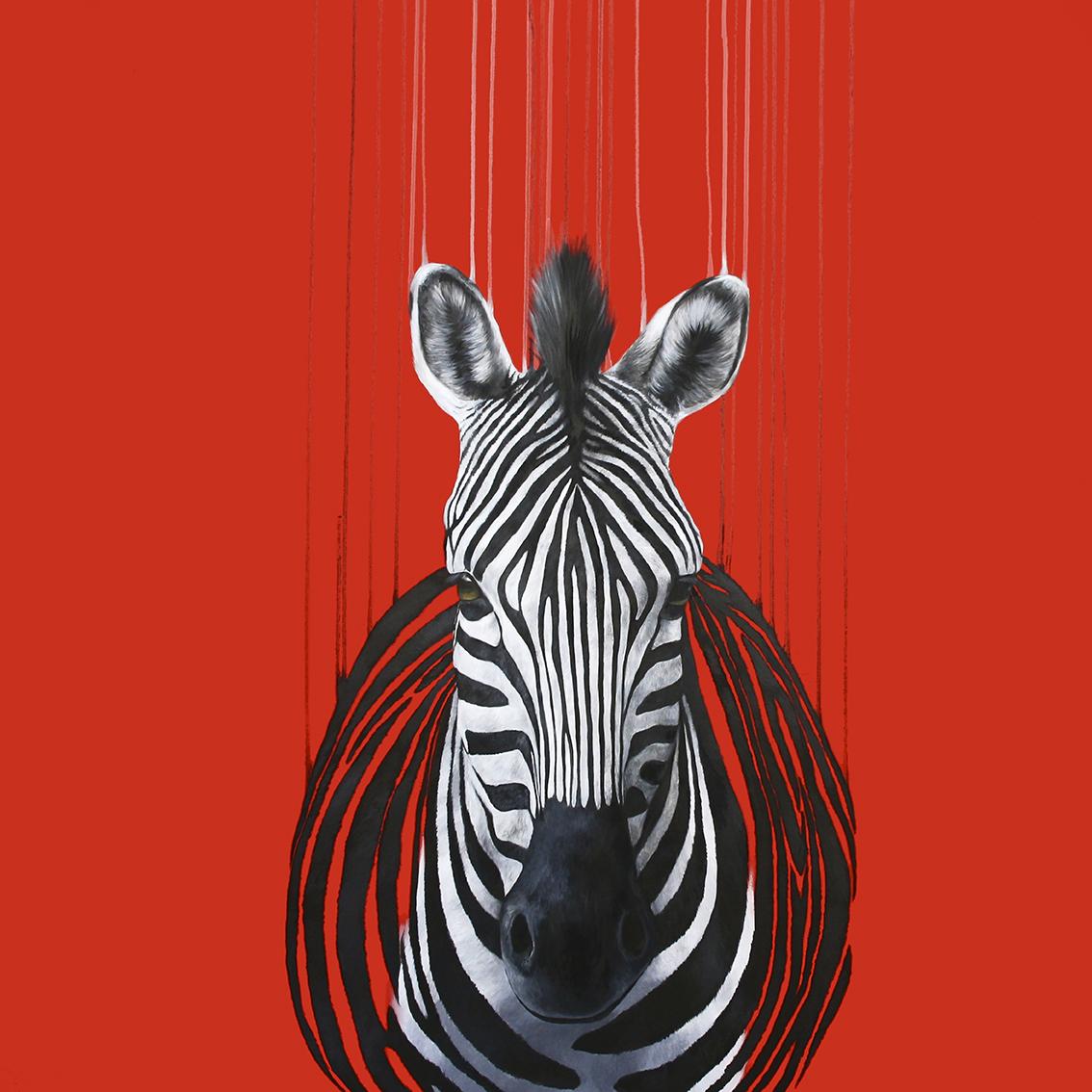 red zebra.jpg