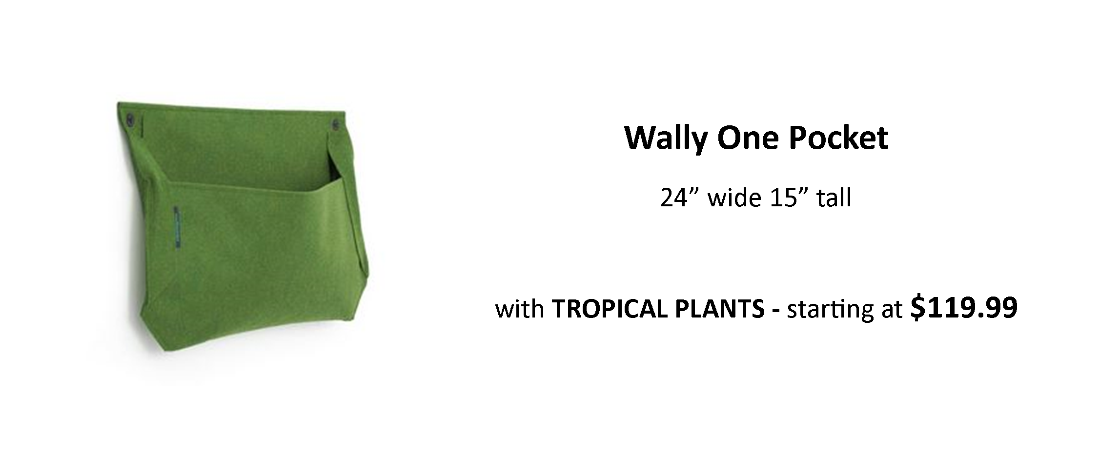 Woolly Pocket Wally One Vertical Garden Planter with Tropical Plants on Indoor or Outdoor Walls
