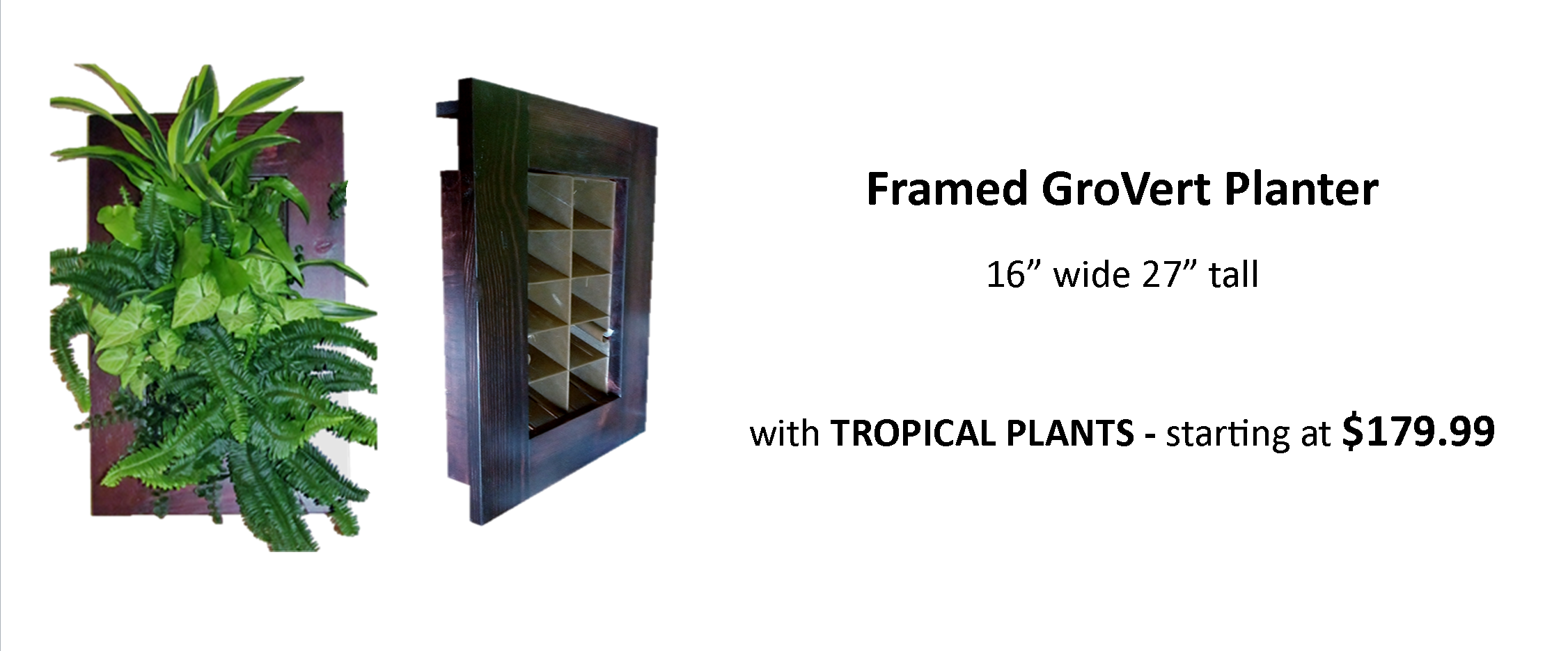 Living Wall Planter for Easy Vertical Gardens Pre Planted with Tropical Plants for Indoor or Outdoor Use with Frame and Watering System