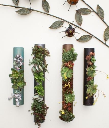Gardens In A Box...Come With Plants!