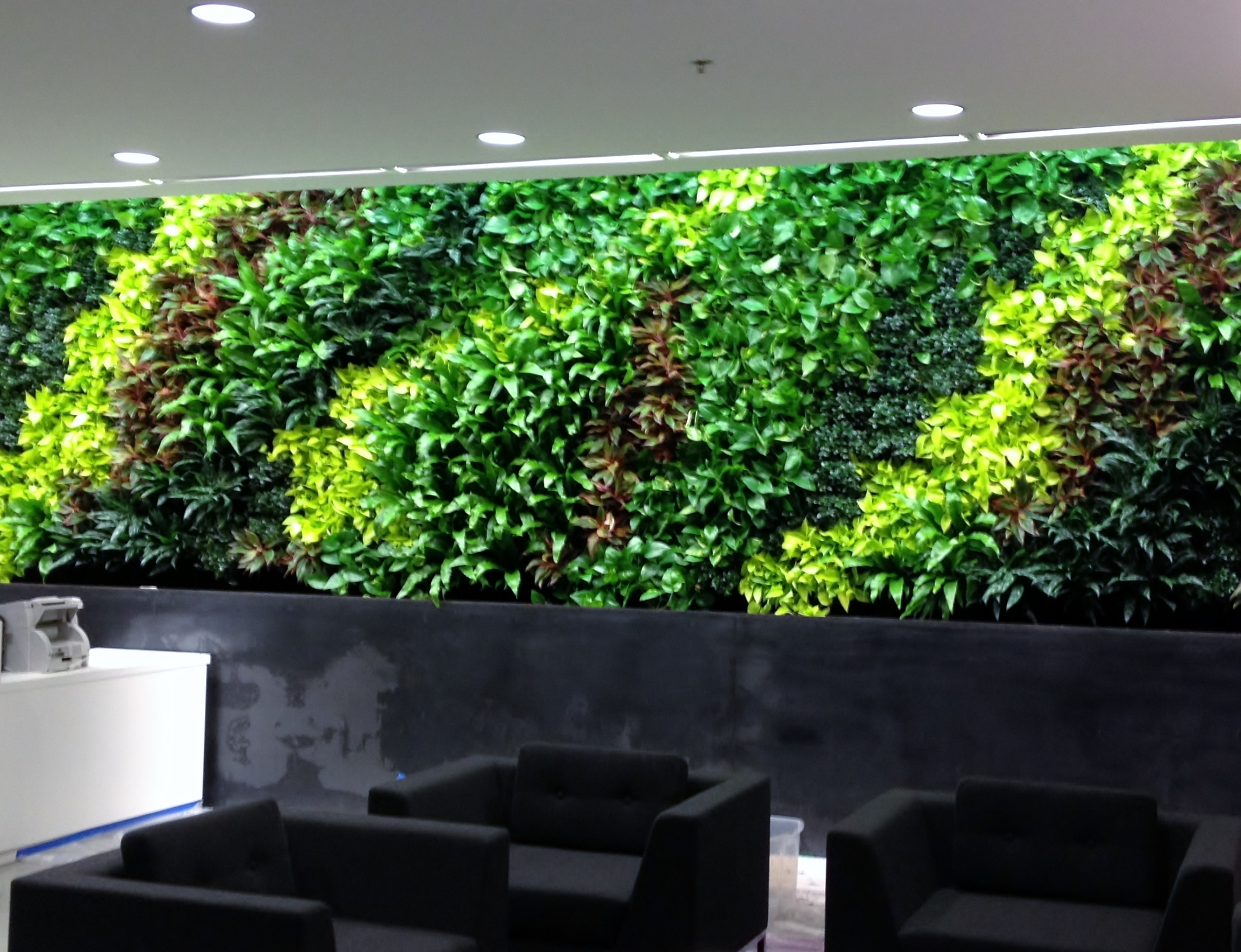 Large Living Wall Installation