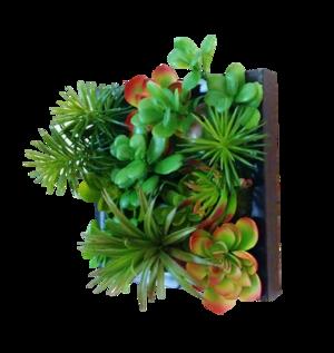 Faux Succulent Living Wall — Edible Walls