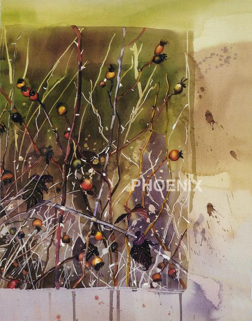 Phoenix 1994