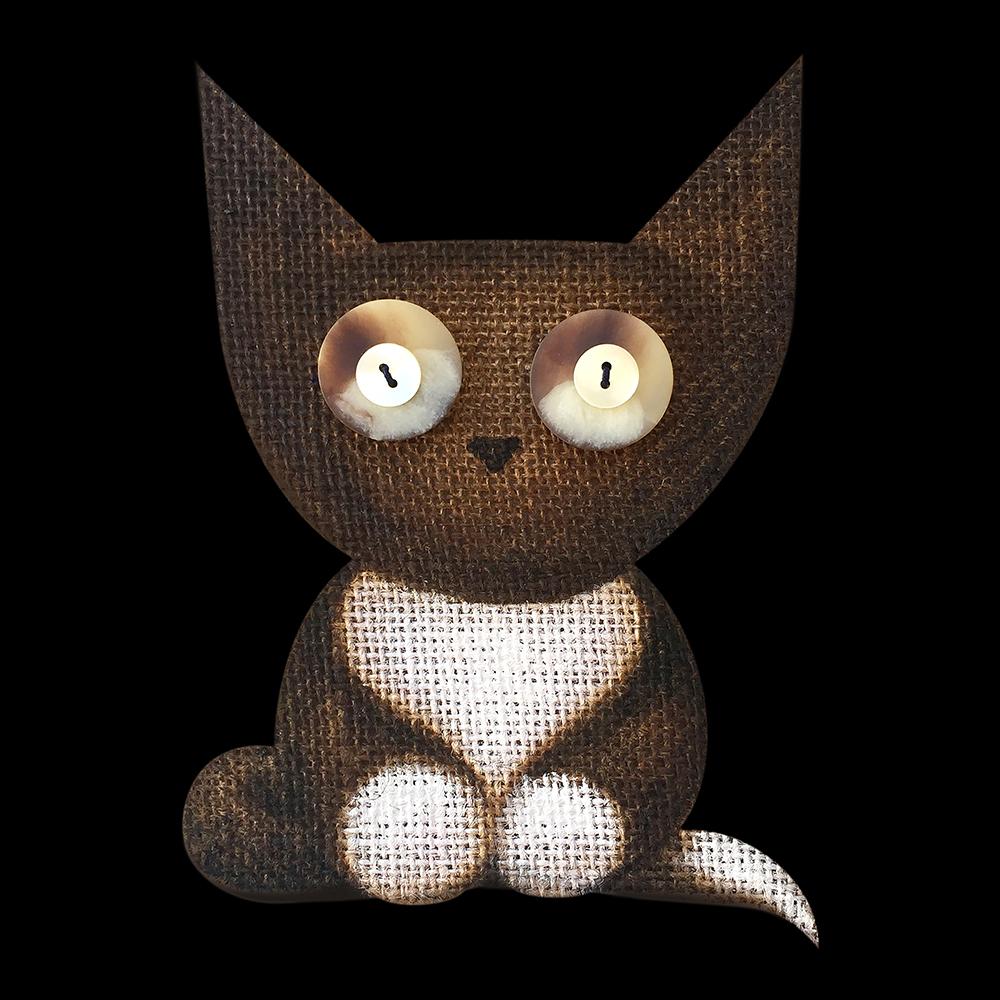 Cat Fine Art - PEPI . Hermes . Don Diego de la Vega