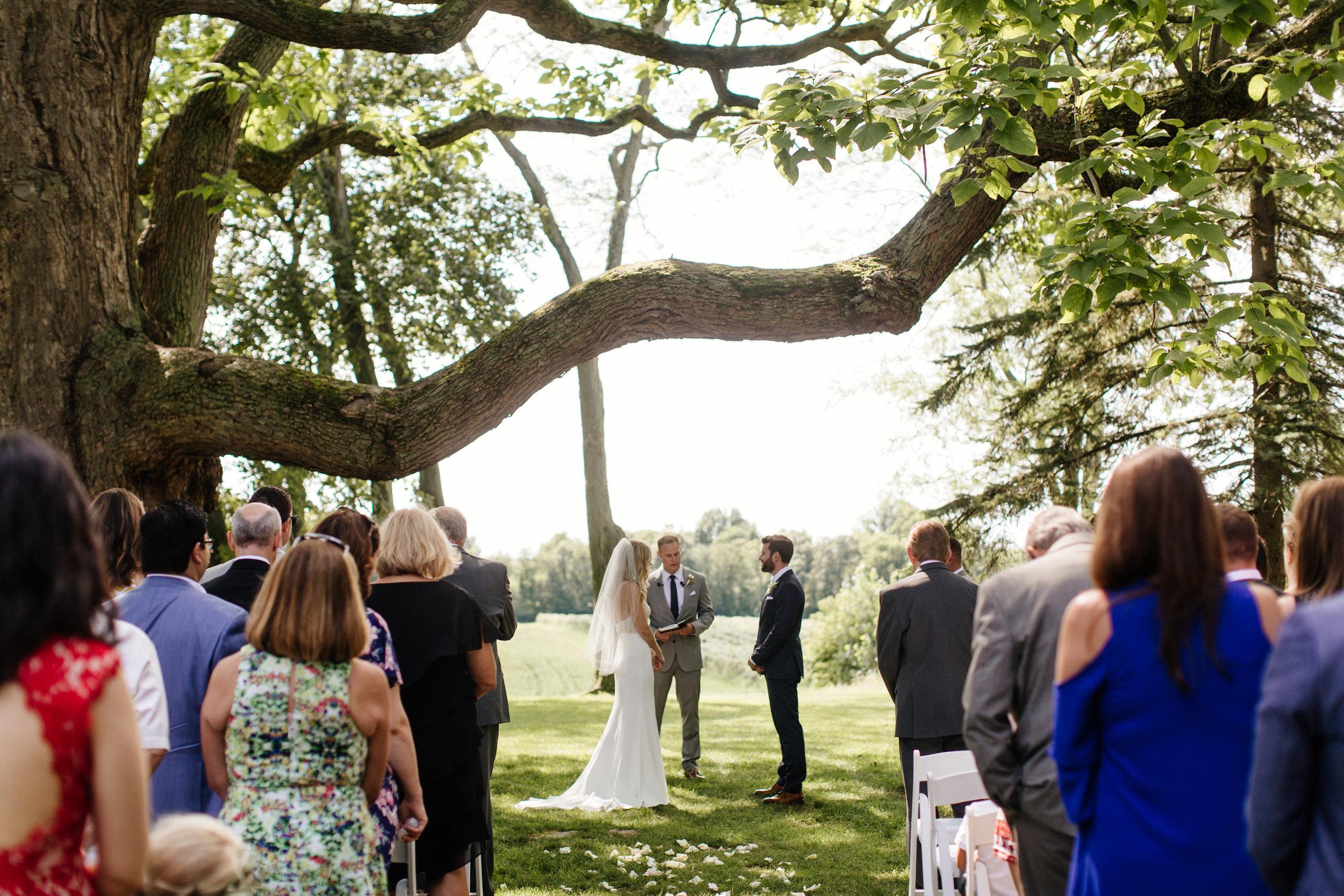 03-Smith-Wedding-Ceremony-115.jpg