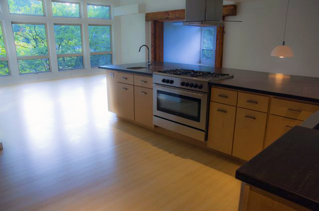 From Kitchen to Living Rm view.jpg