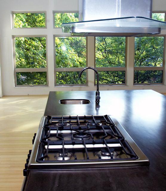 Kitchen range & hood view.jpg