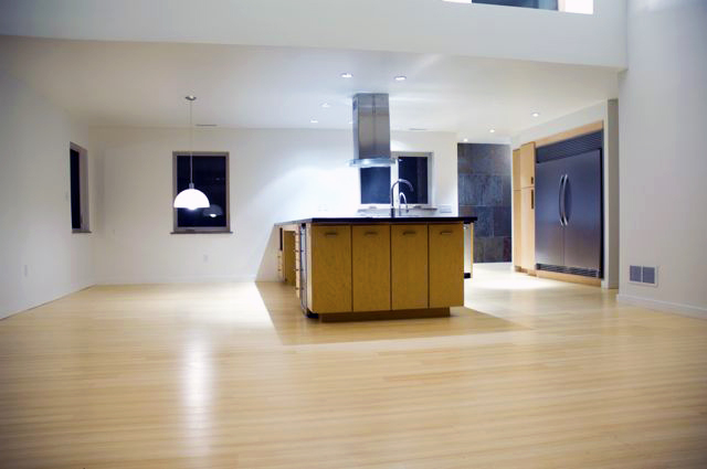full view of kitchenliving area.jpg