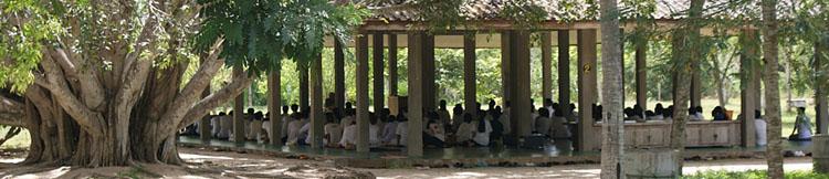 http://www.suanmokkh-idh.org