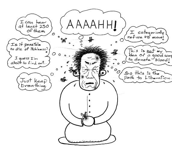 https://www.meditationcartoons.com/tag/meditation-book