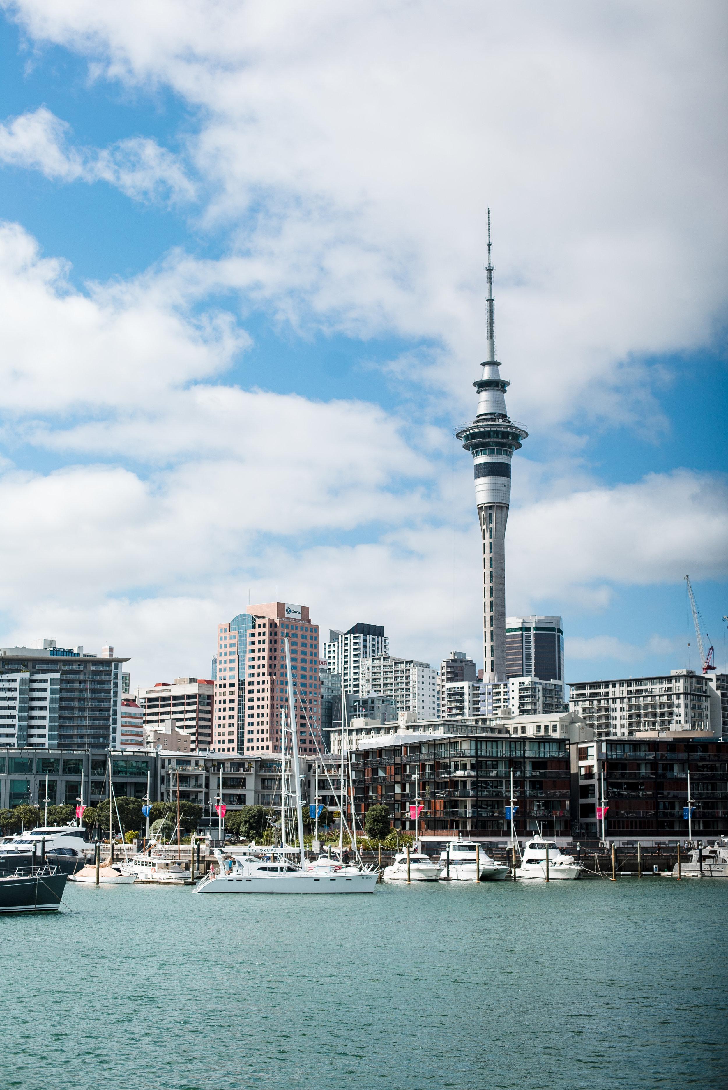 newzealand-00021.jpg