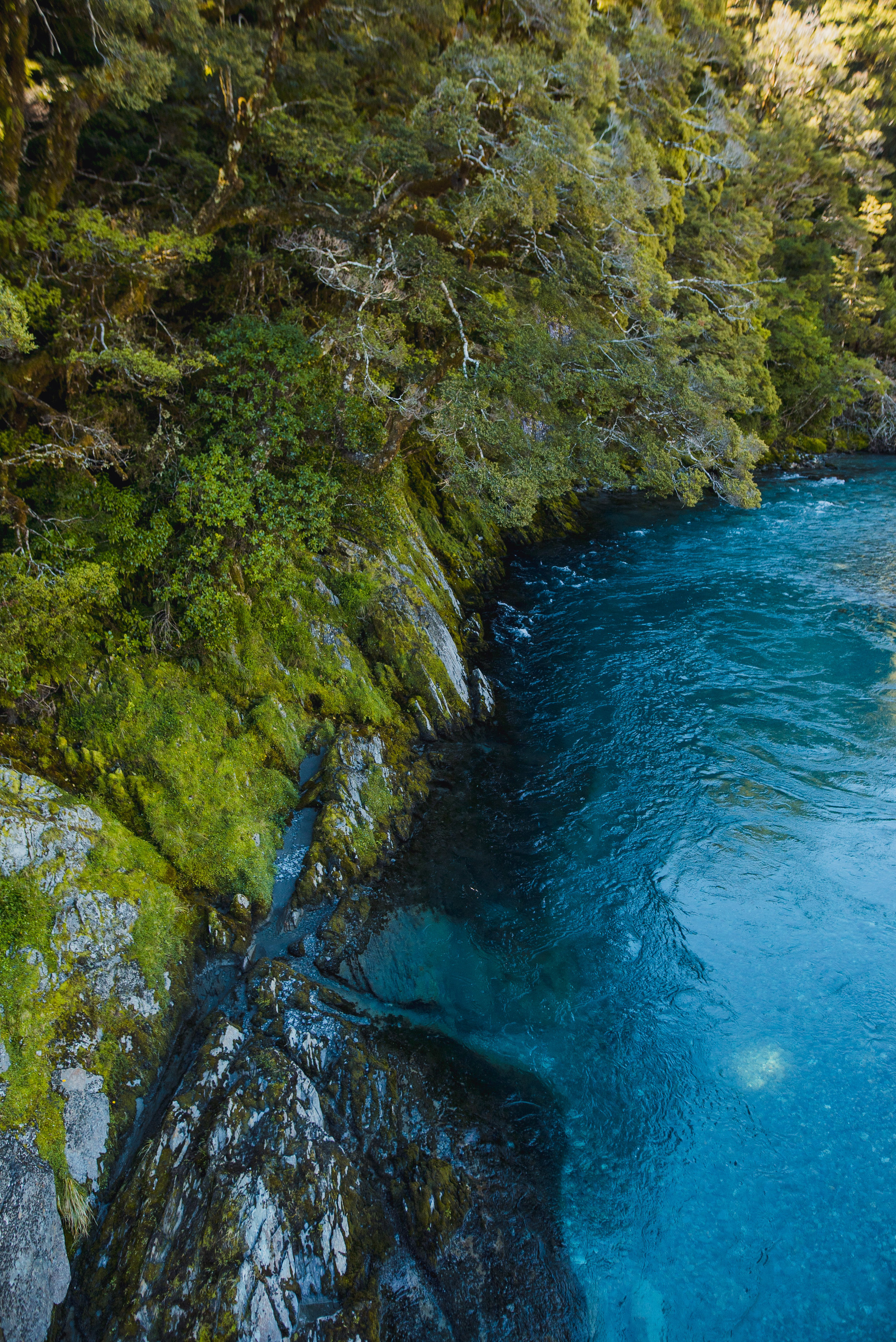 newzealand-00226.jpg