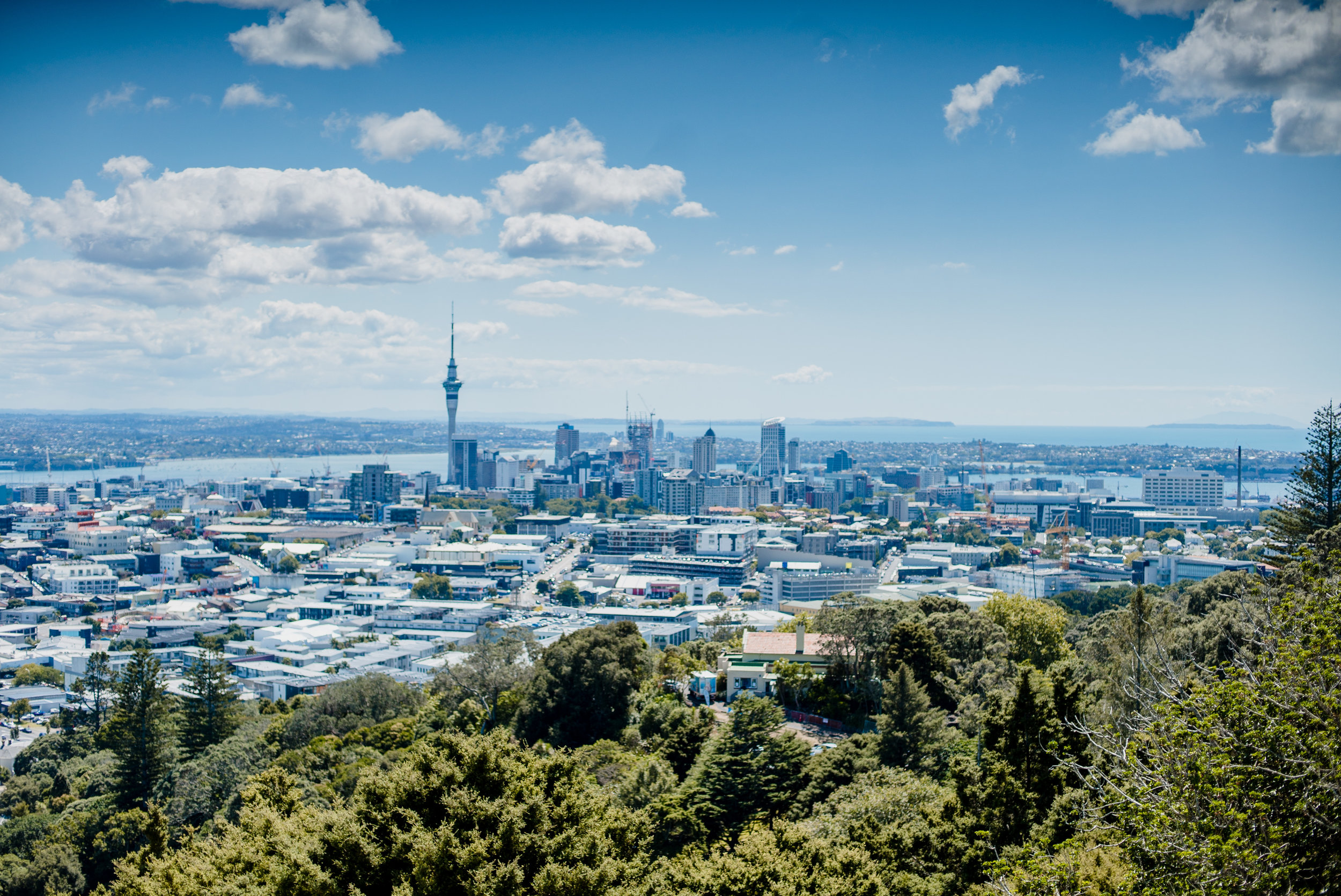AUCKLAND - One day in the modern, hilly, ocean capital of the North Island