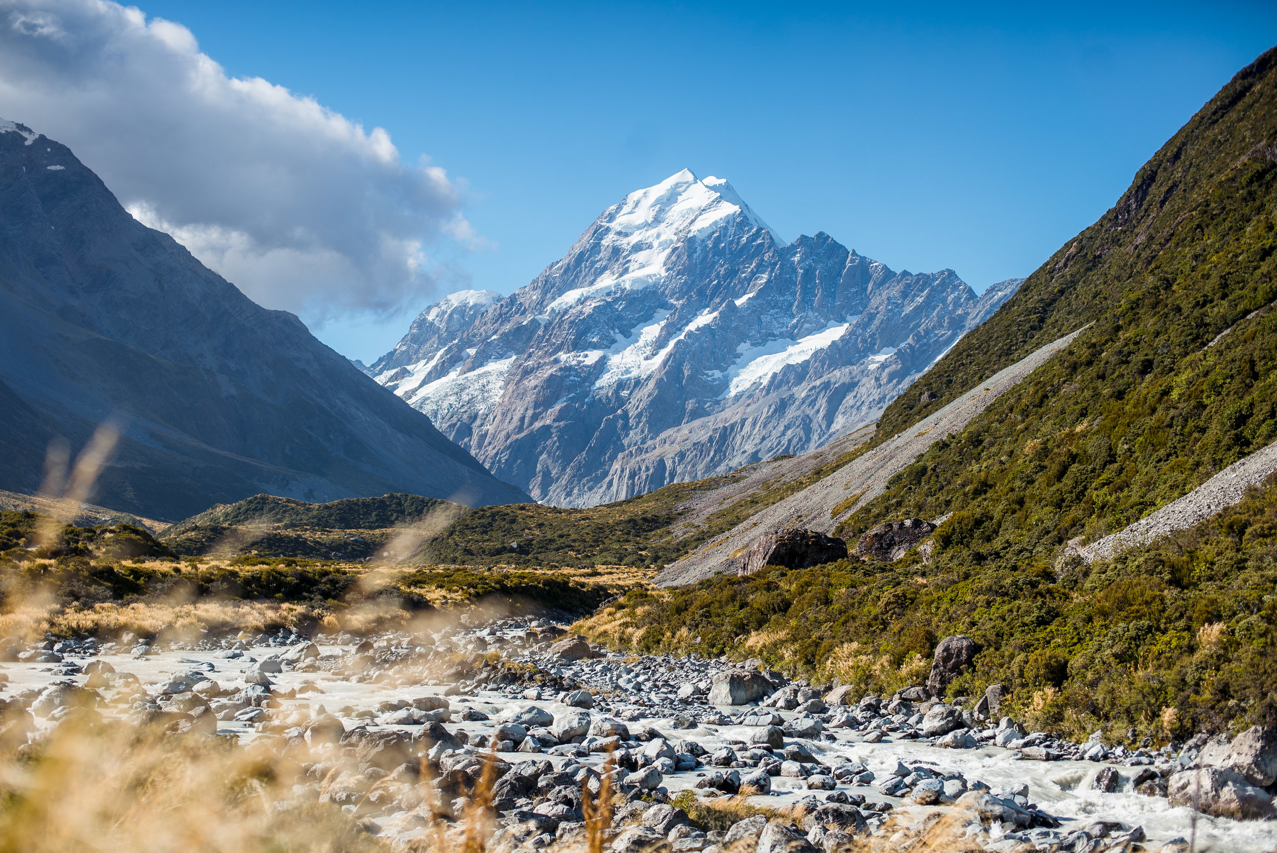 newzealand-00779.jpg