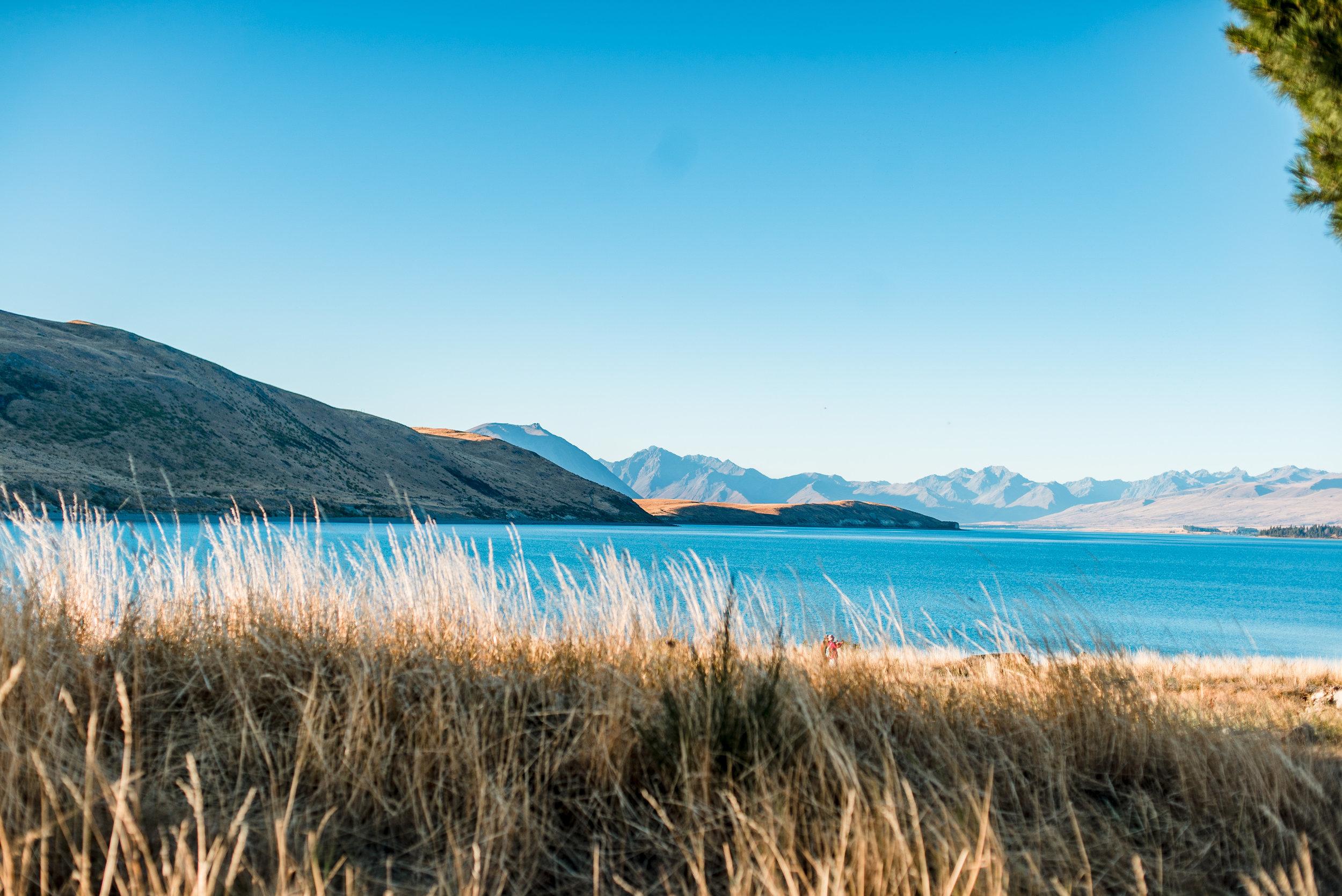 Lake Tekapo. One of New Zealand's countless blue lakes.