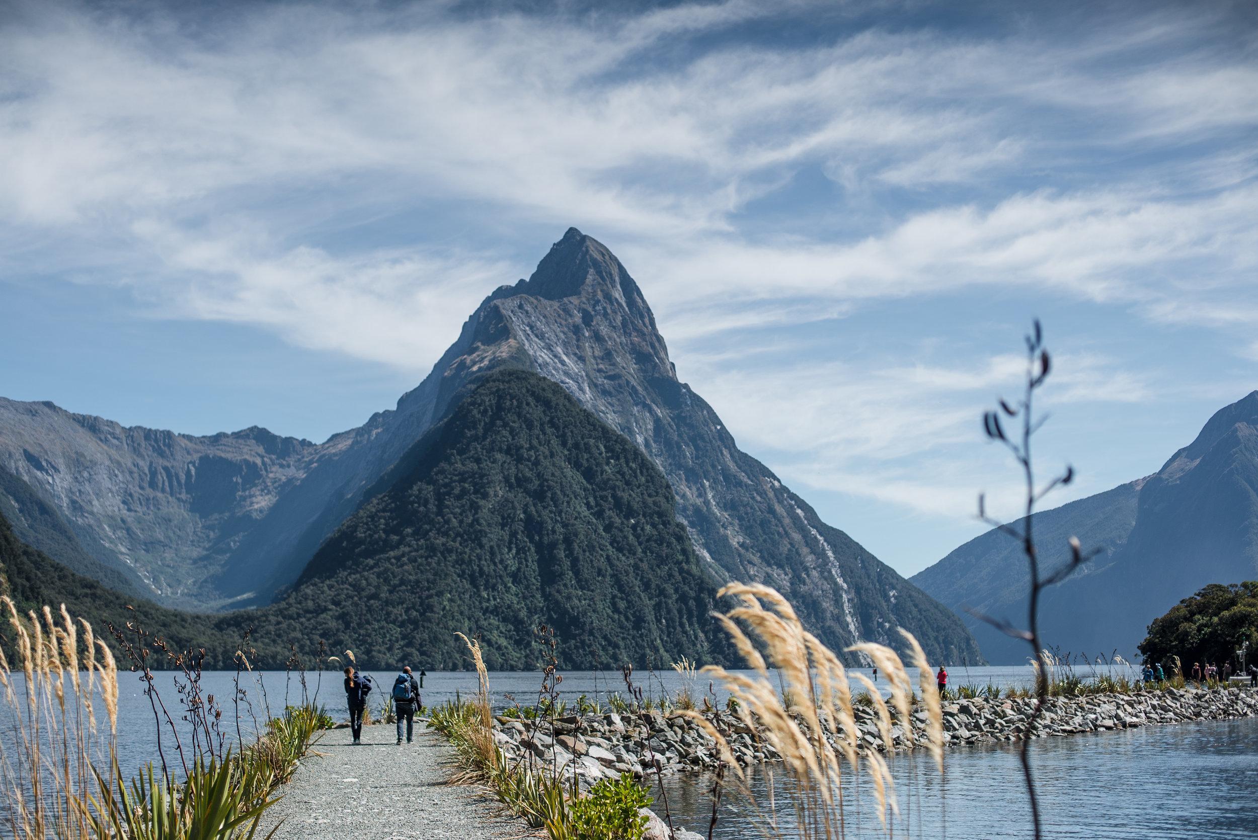 newzealand-01459.jpg
