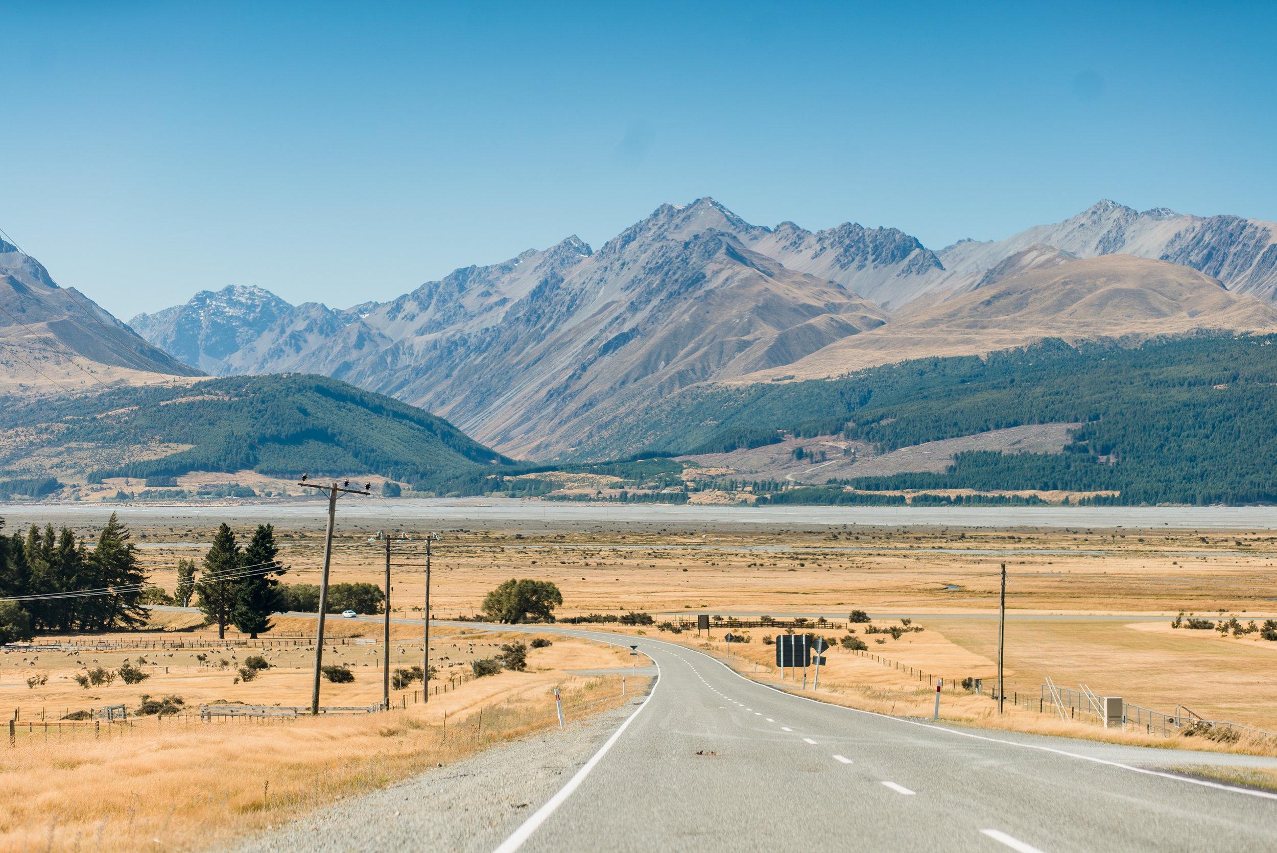 newzealand-00687.jpg