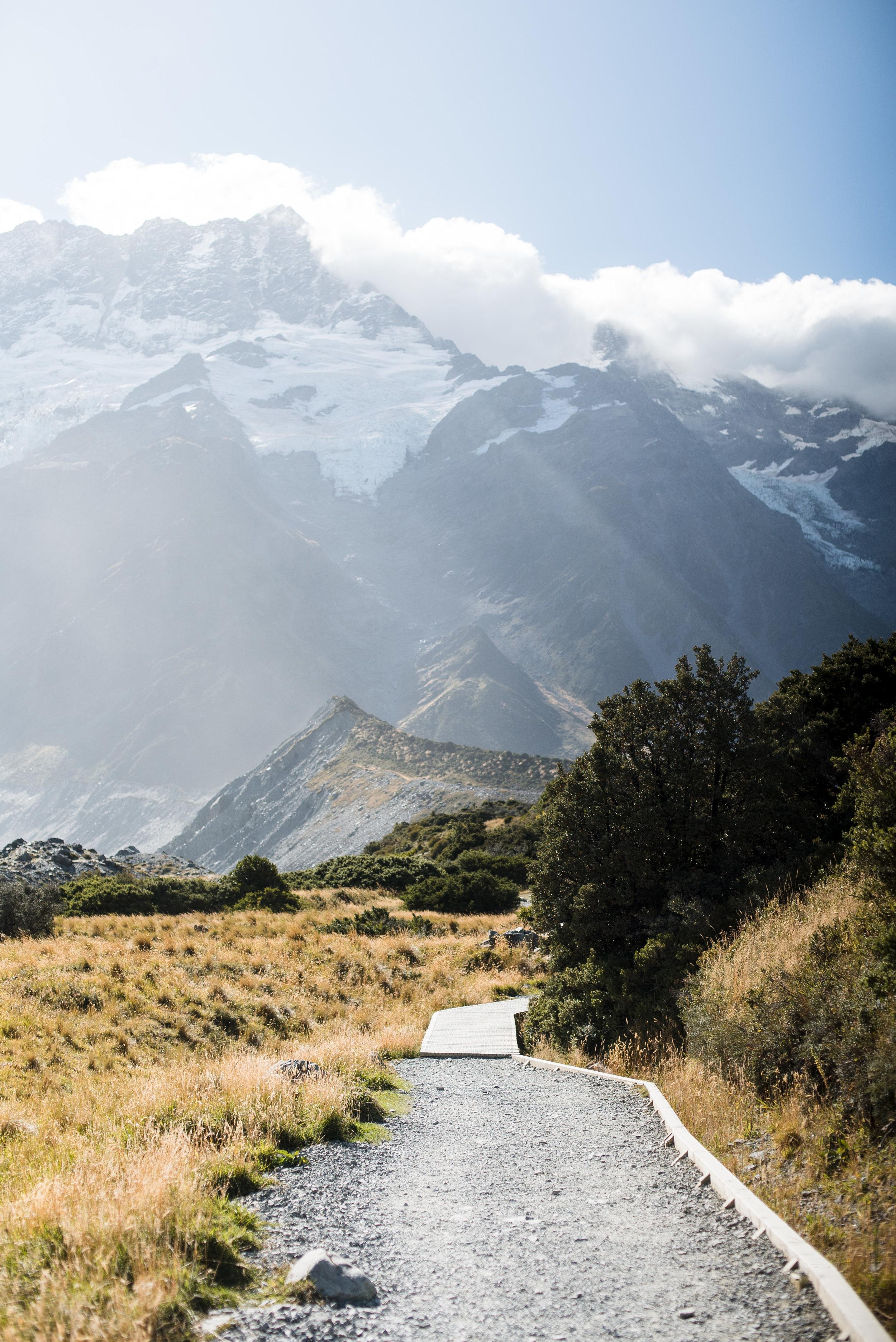 newzealand-00744.jpg
