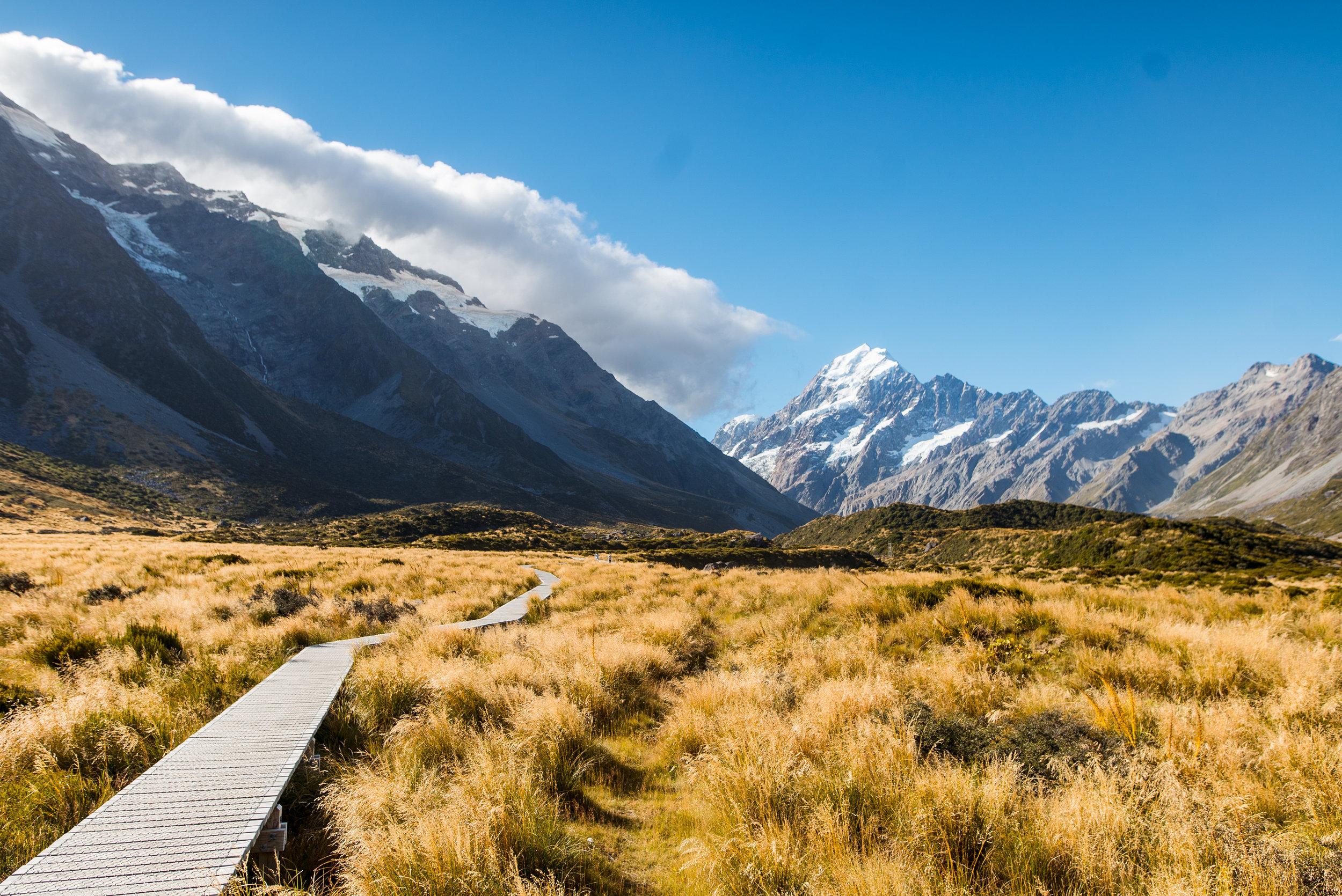 newzealand-00799 2.jpg