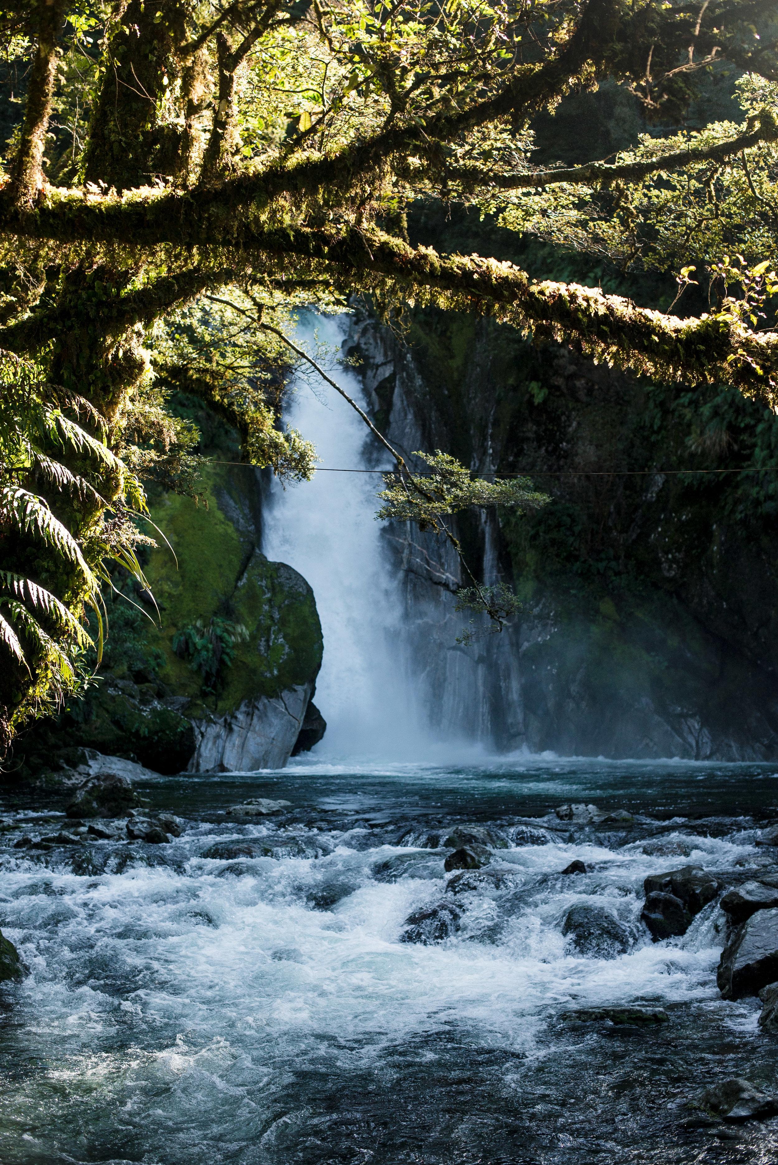 newzealand-01417.jpg
