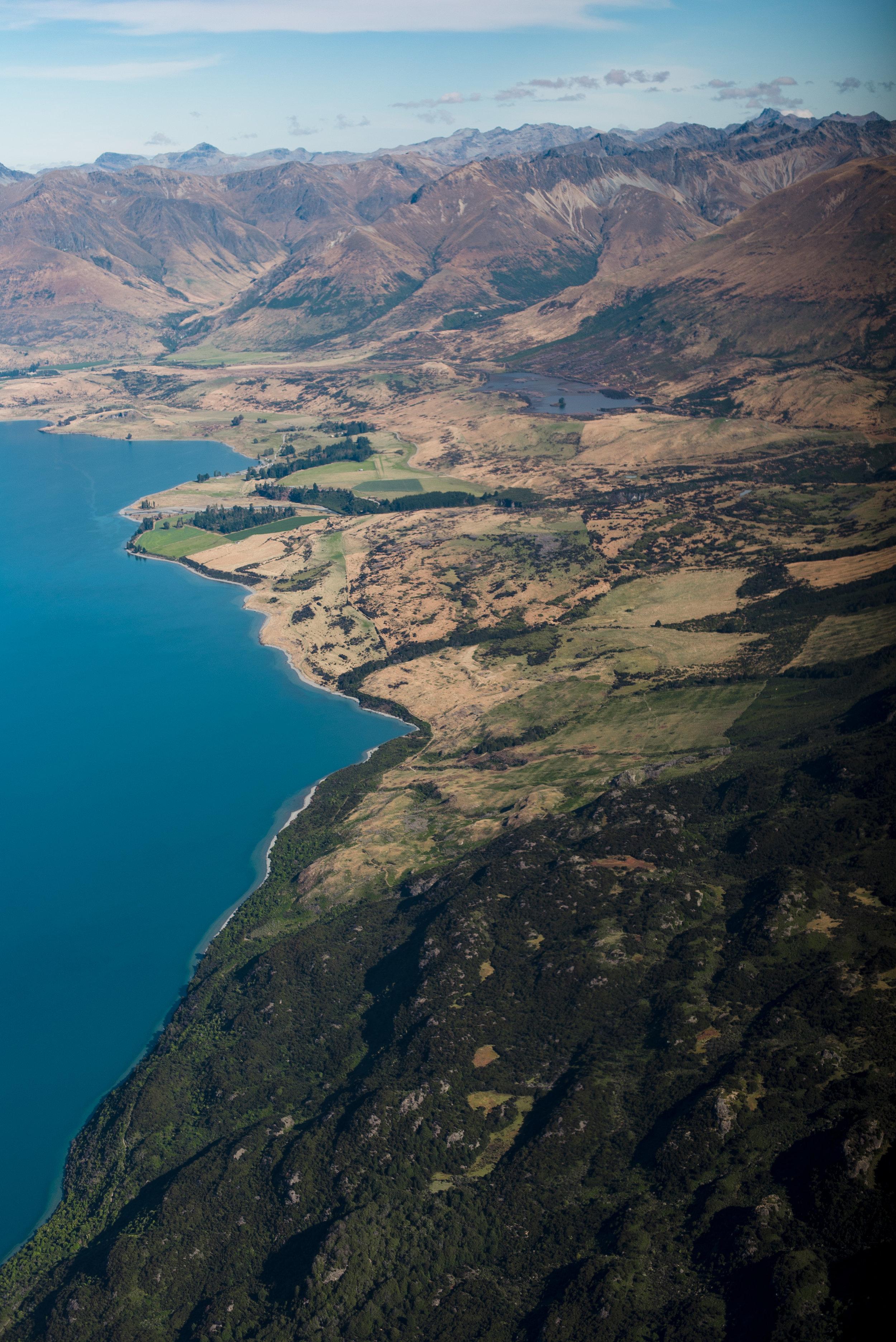 newzealand-01628.jpg