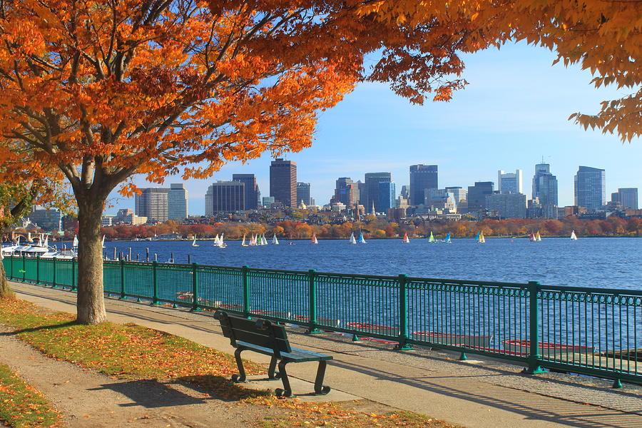 Photo courtesy of Dig Boston