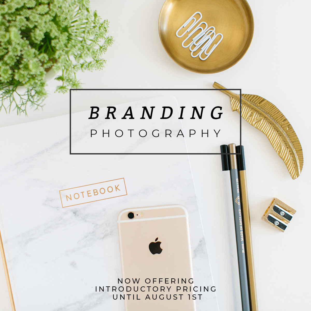 Branding_photography_annremotigue.jpg