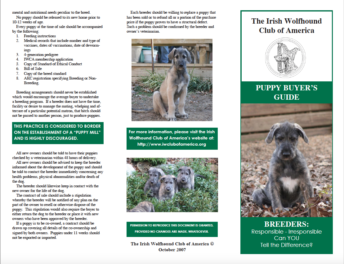 Page 2 puppy_buyers_guide.pdf 2017-04-14 14-02-18.jpg