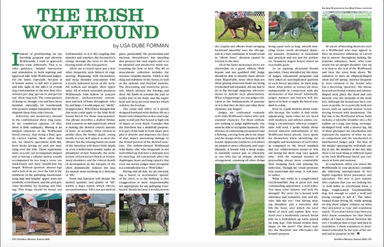 ShowSight Presents - The Irish Wolfhound 2018-06-13 17-28-49.jpg