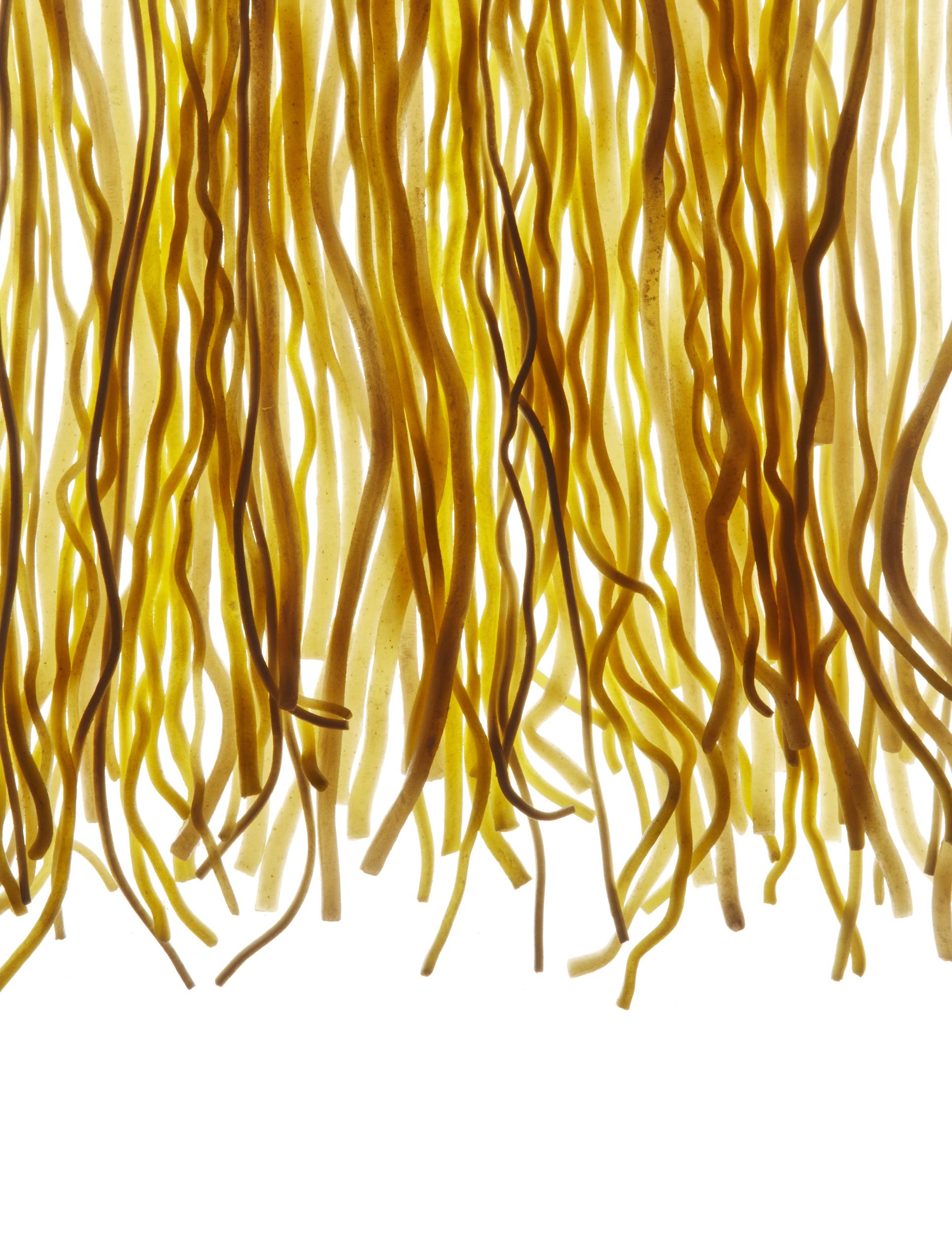 121001_Noodles 10773.jpg