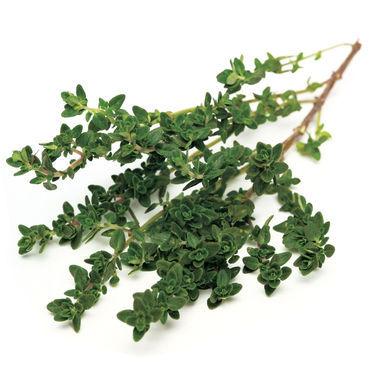 Herbal thyme