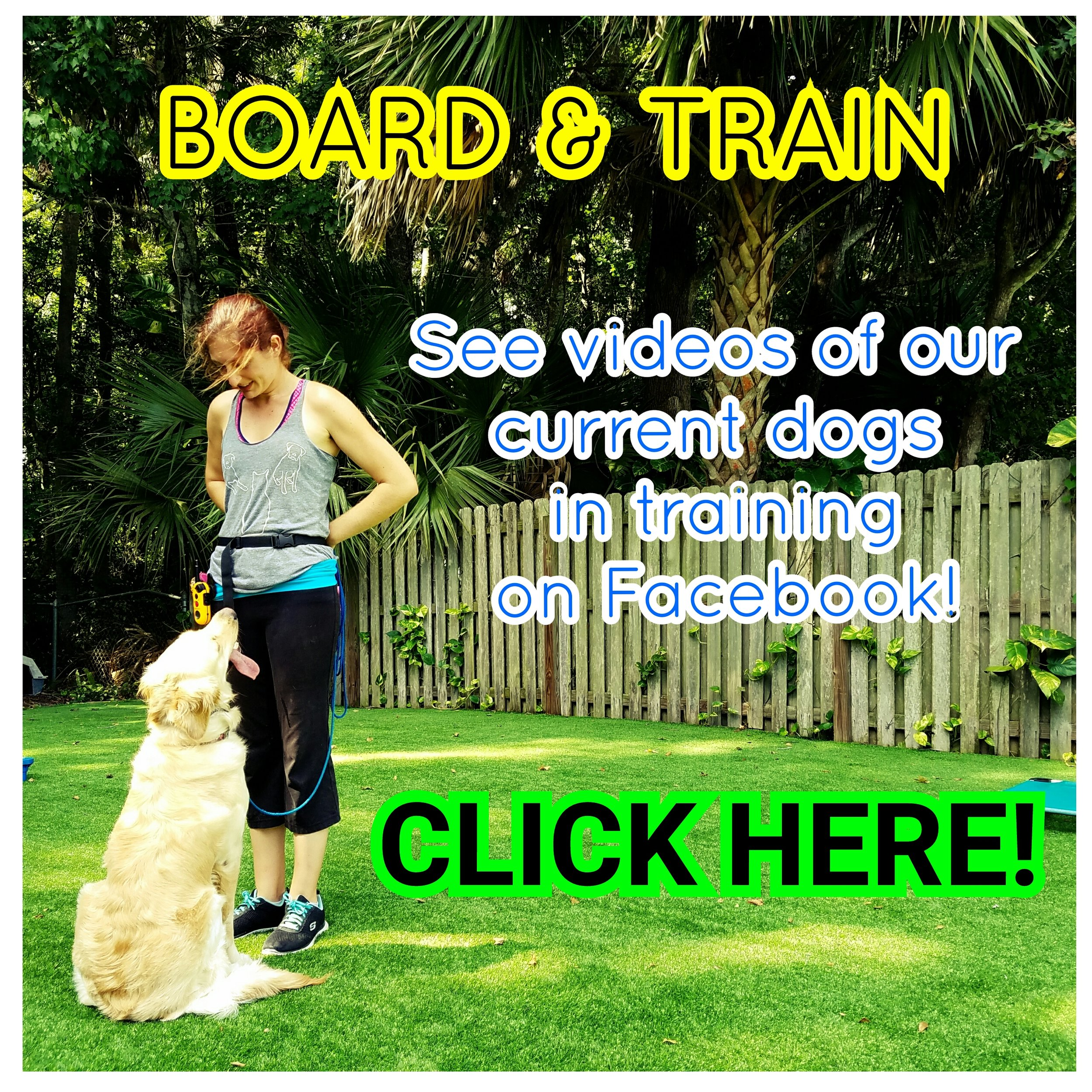 board and train orlando