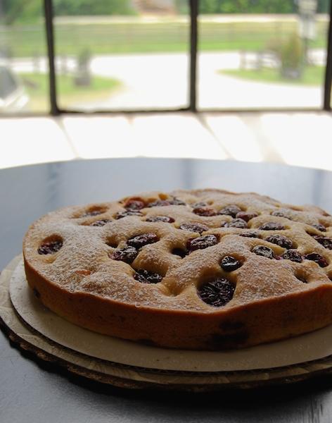 harvest grape cake