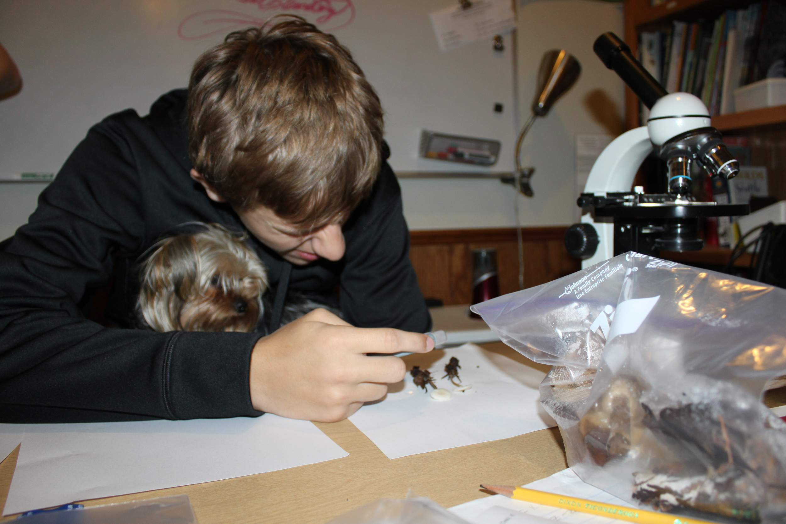Roxy helping Chris look at muschrooms