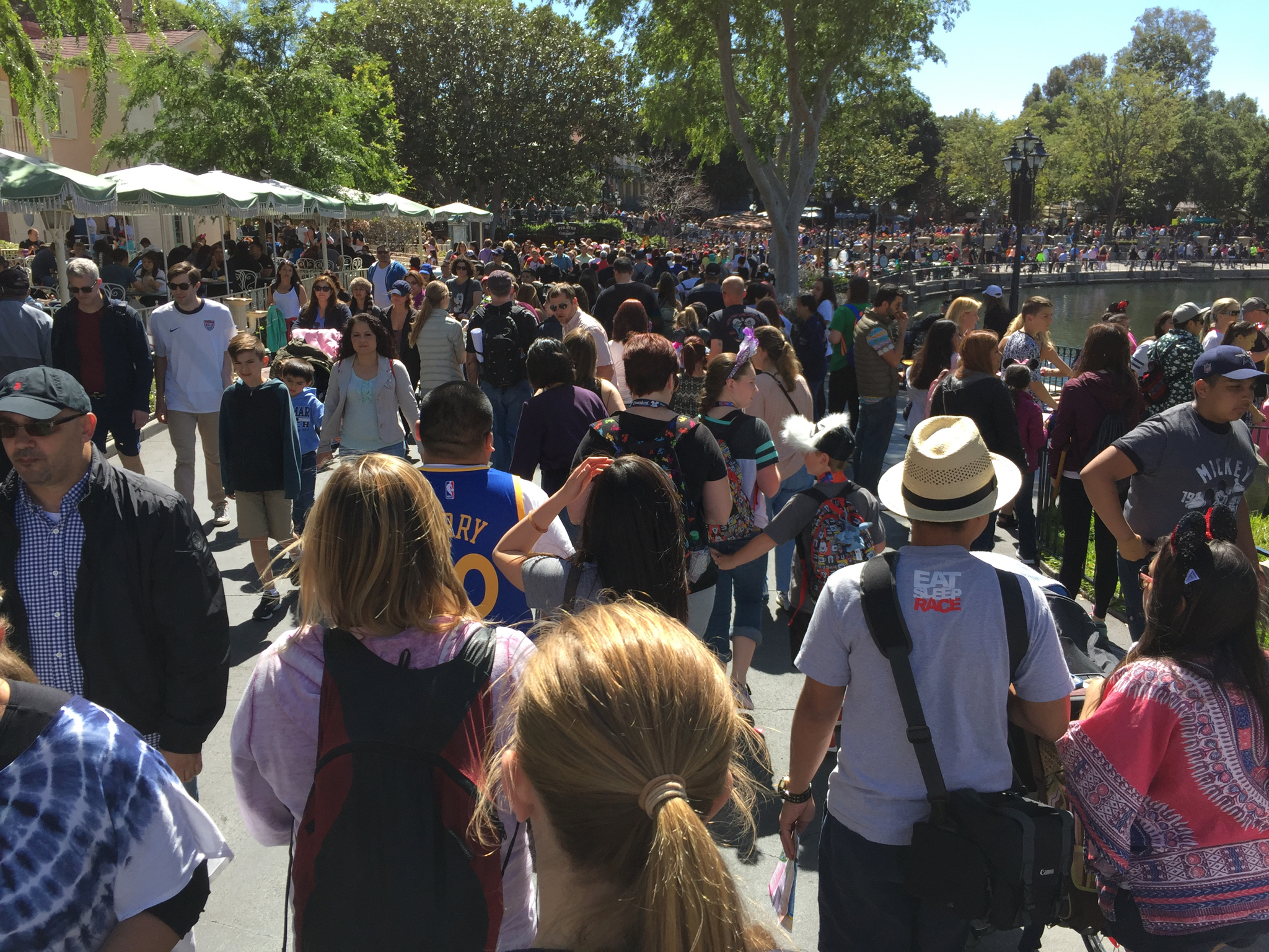The Crowds