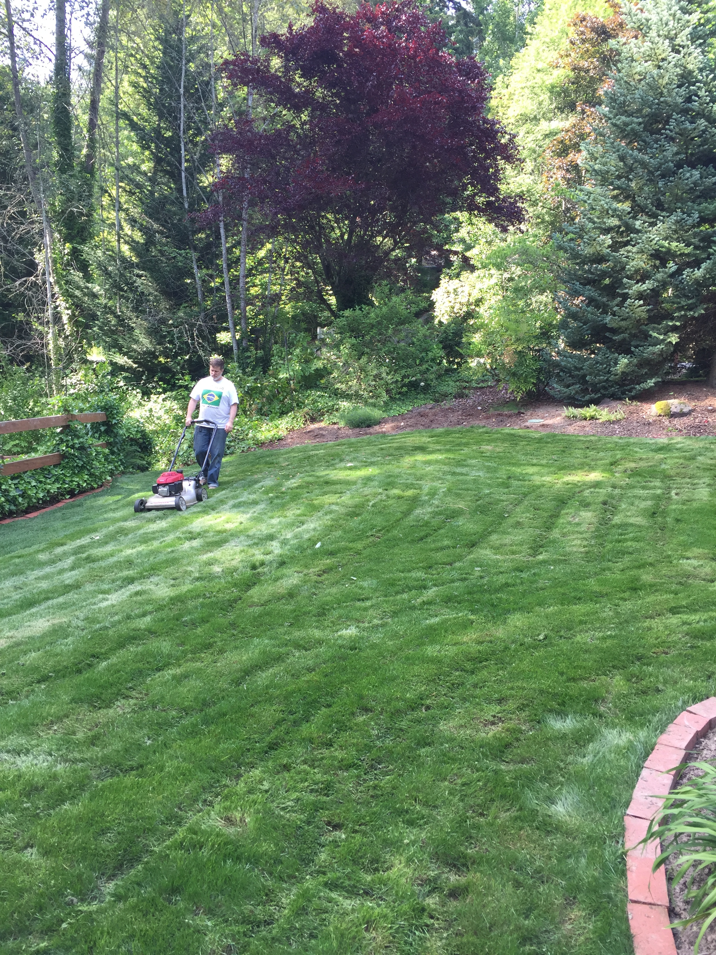 Steve mowing the new yard!