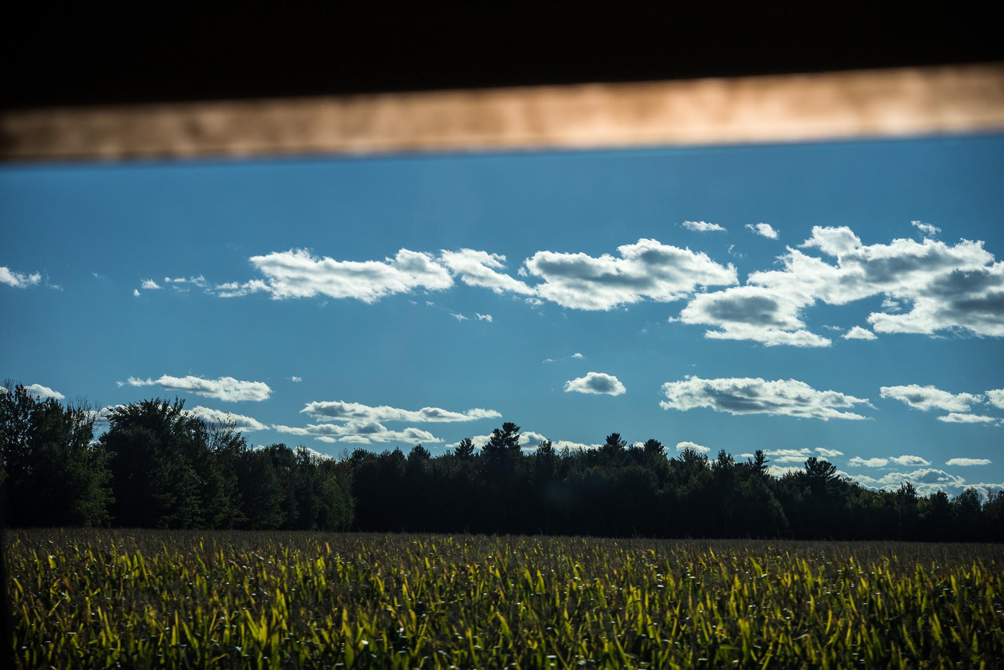 Green Tea Photography-37.jpg