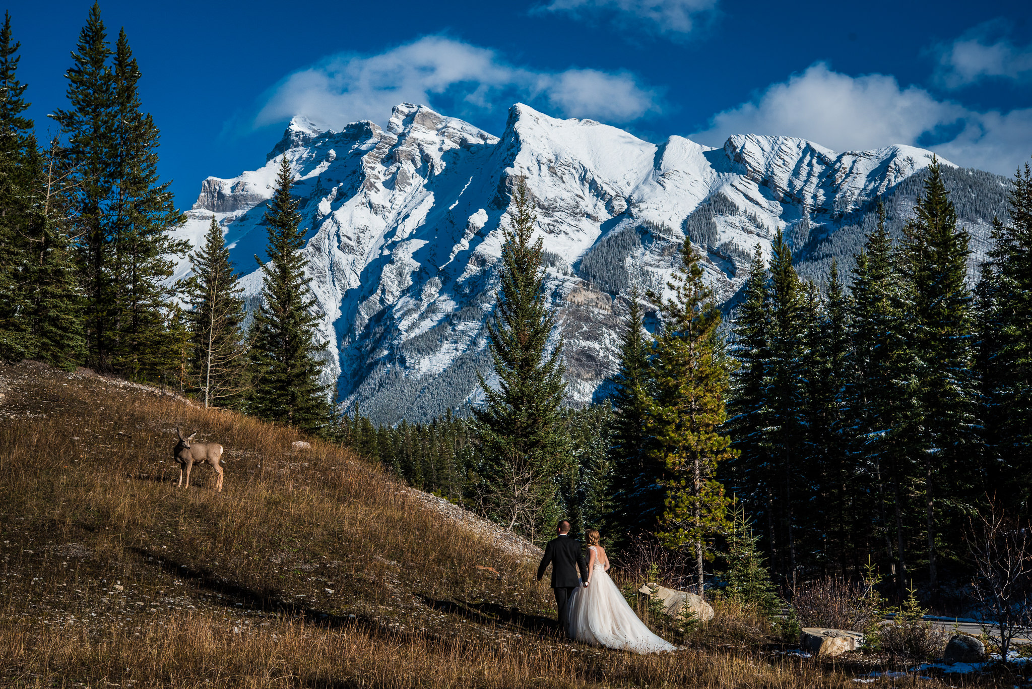 Banff Wedding-118.jpg