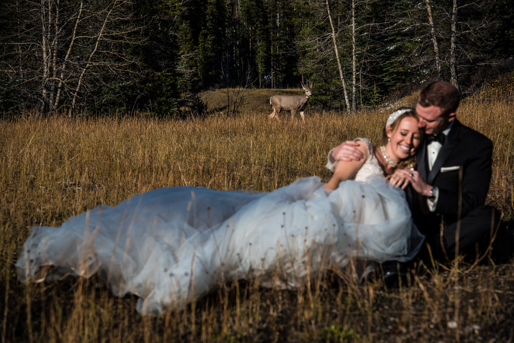 Banff Wedding-1-11.jpg