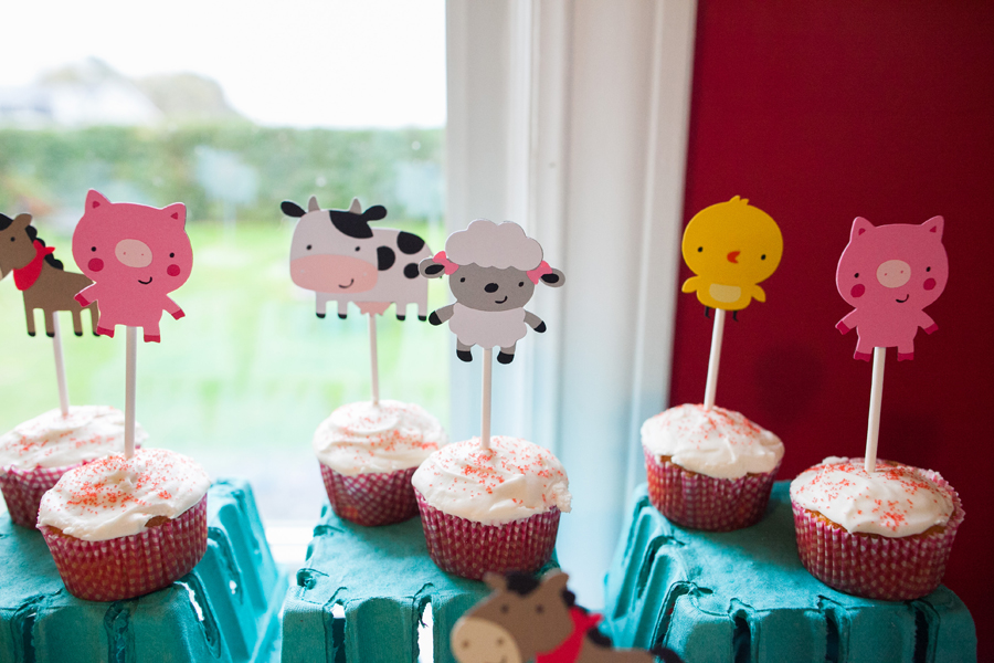 002-one-year-farm-themed-birthday-party-bellingham.jpg