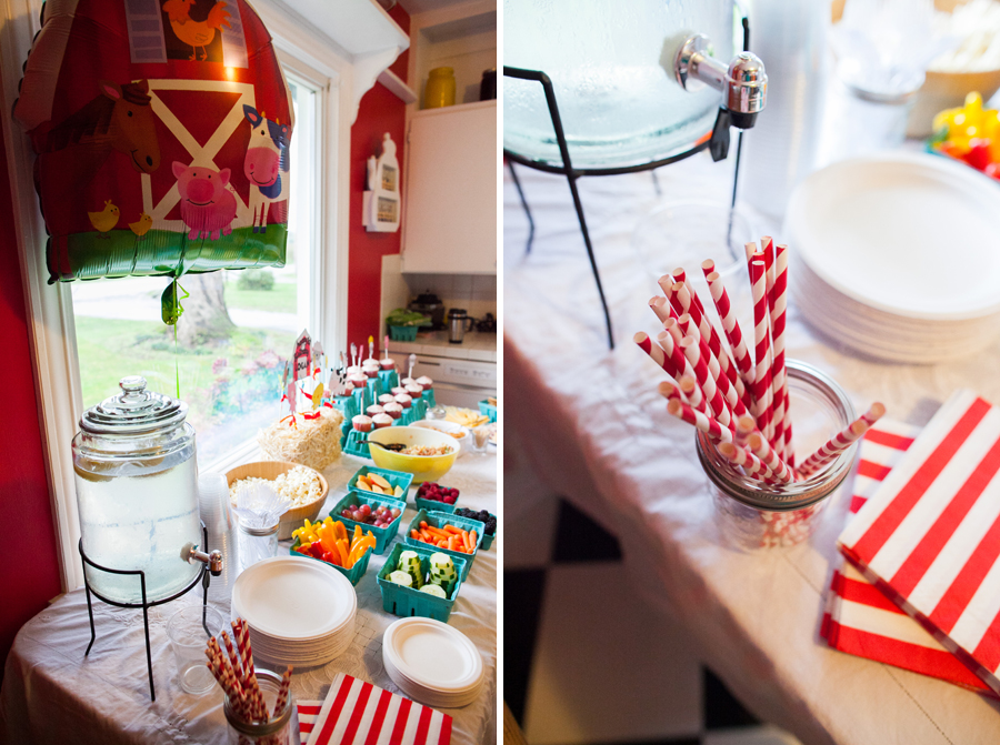 003-one-year-farm-themed-birthday-party-bellingham.jpg