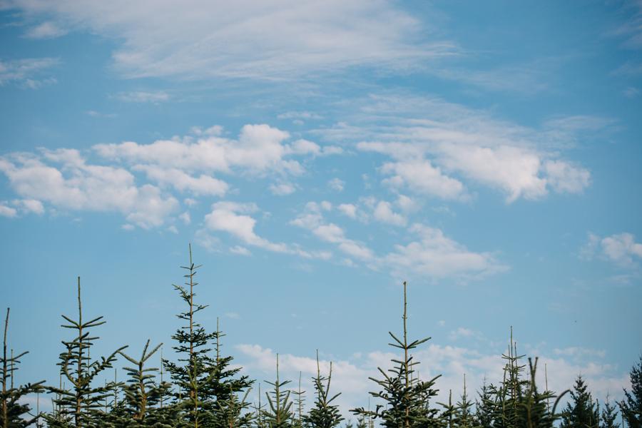 084-portland-oregon-silverton-tree-farm-wedding-katheryn-moran-photography.jpg