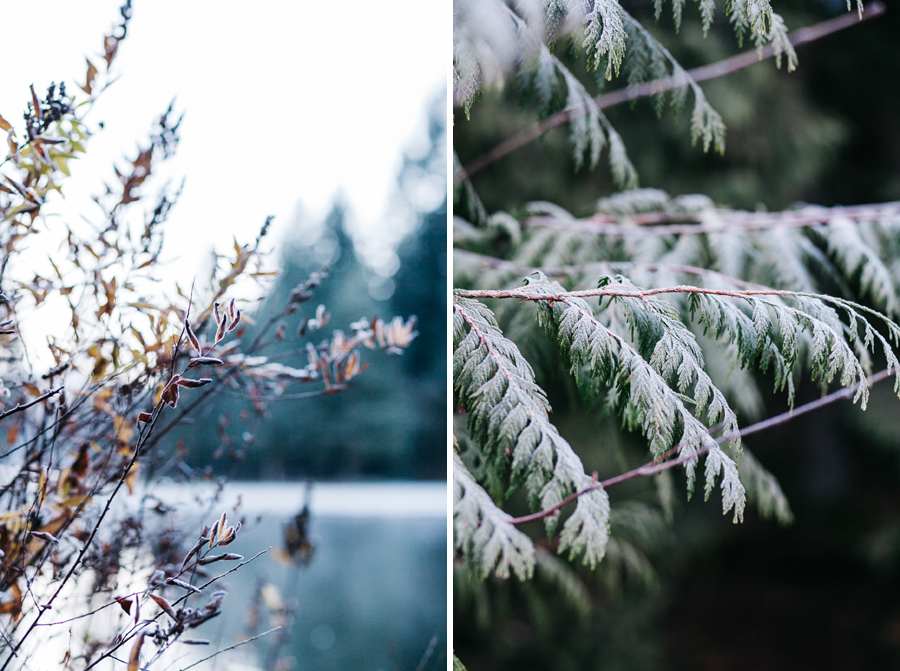 002-silver-lake-engagement-session-bellingham-engagement-photographer-katheryn-moran-photography.jpg