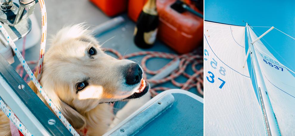 019-bellingham-bay-washington-sailboat-engagement-katheryn-moran-mickeykatie.jpg