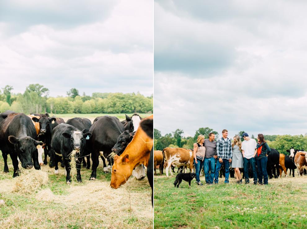 001-lynden-washington-cow-farm-family-photography-katheryn-moran-photography.jpg