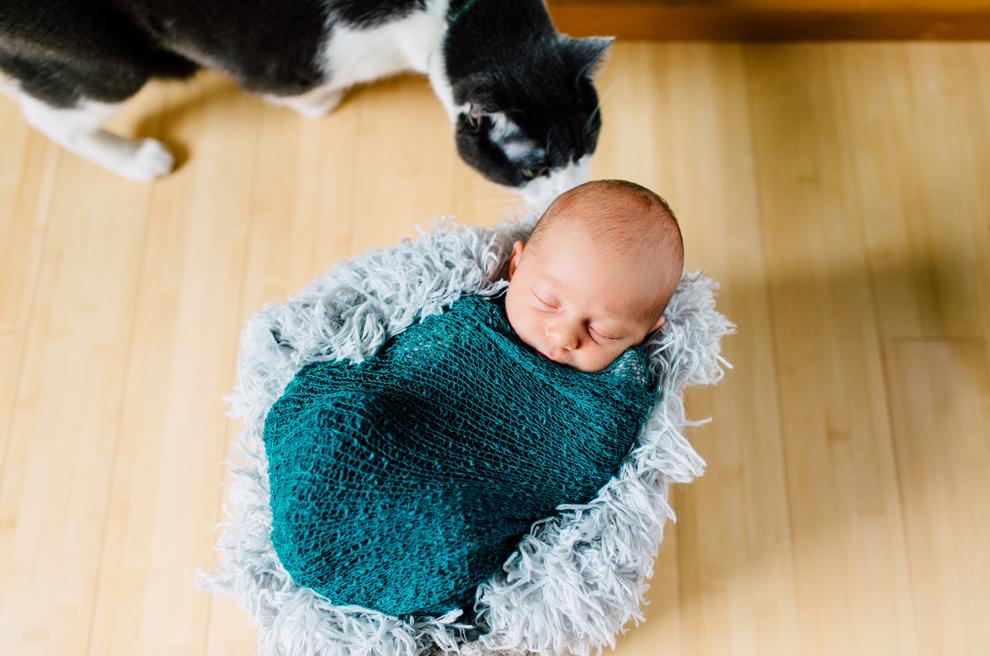 011-bellingham-newborn-lifestyle-photographer-katheryn-moran-hadley.jpg