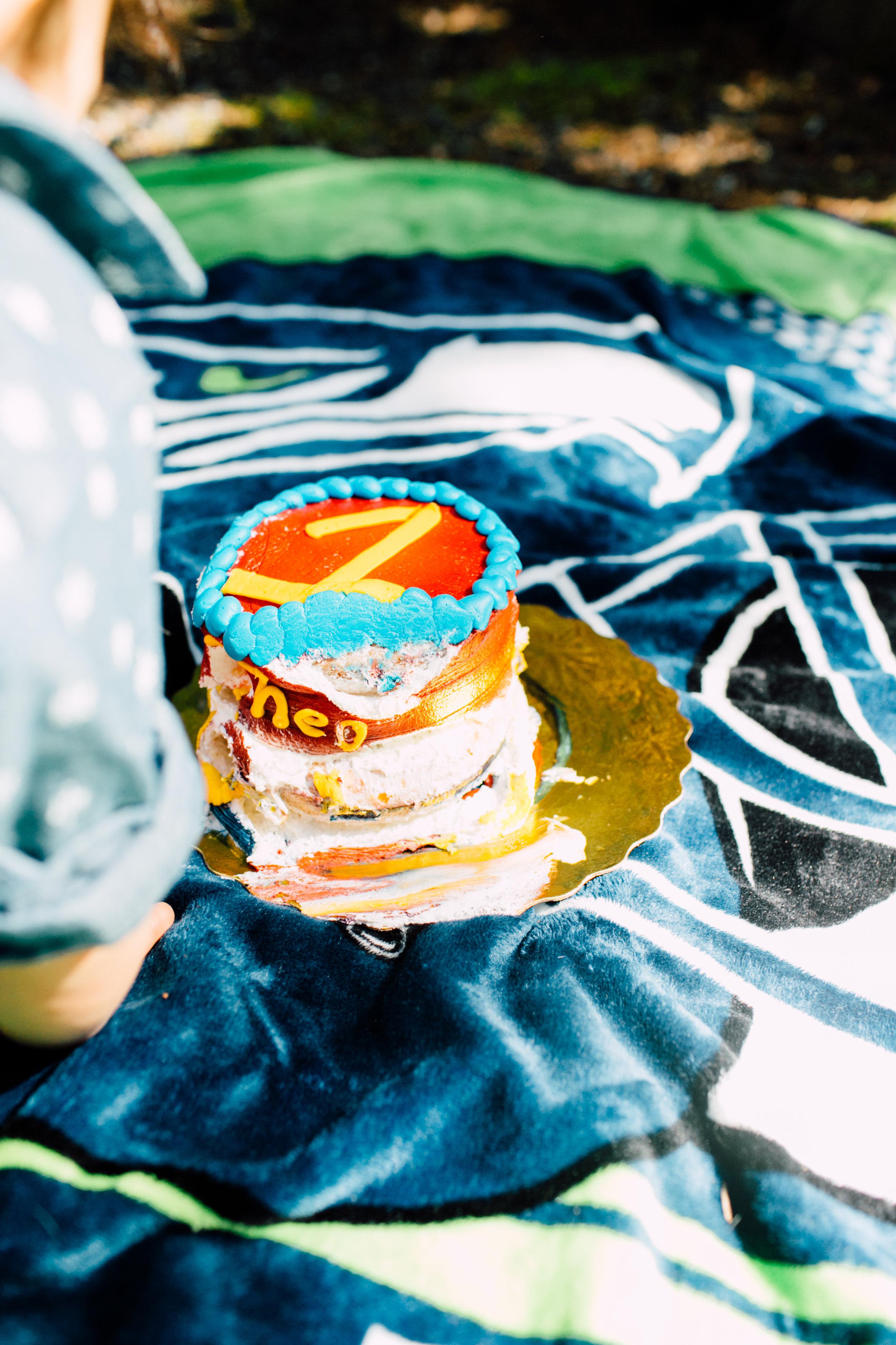 bellingham-spring-mini-cake-smash-photography-theo-34.jpg