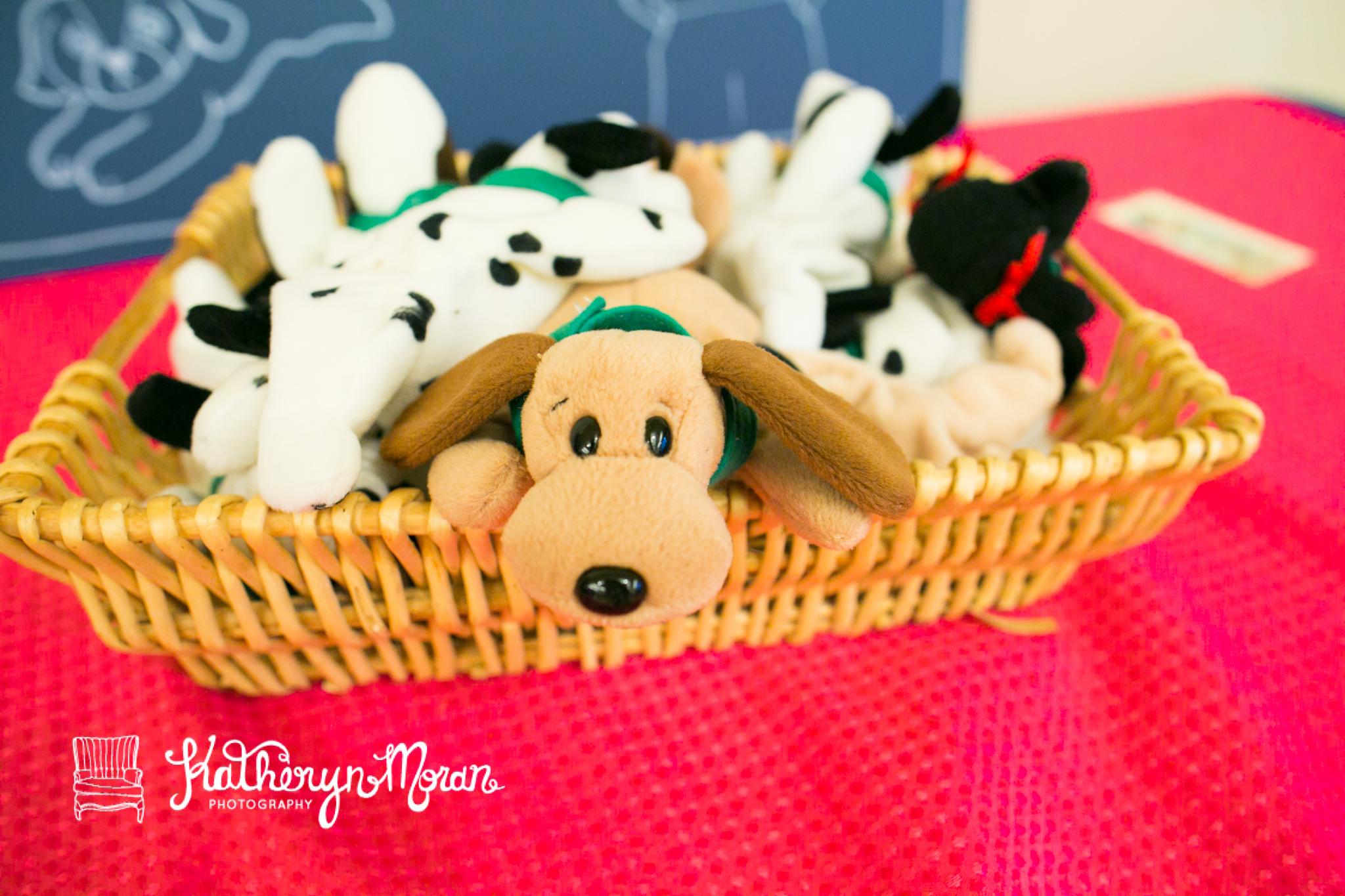 PuppyParty-23.jpg